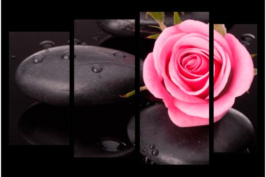 Модульная картина Роза на камнях